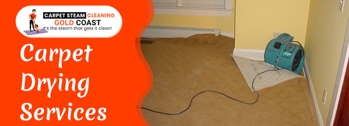 Carpet Drying Services